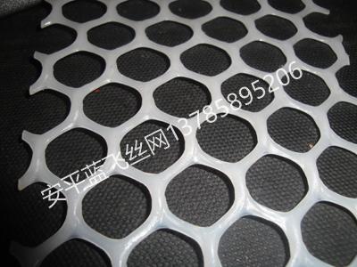 塑料平网-2.JPG